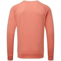 Plain HD raglan sweatshirt Russell 250 GSM