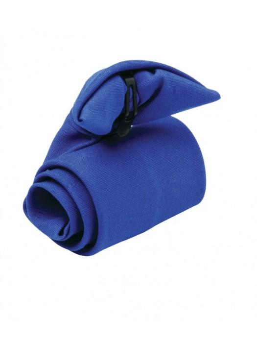 Plain Tie Clip on Premier