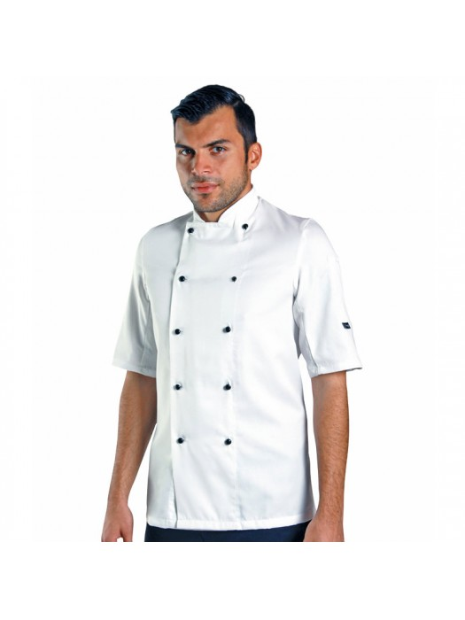 Plain jacket Short sleeve chef's jacket with removable studs Dennys LONDON 200 GSM